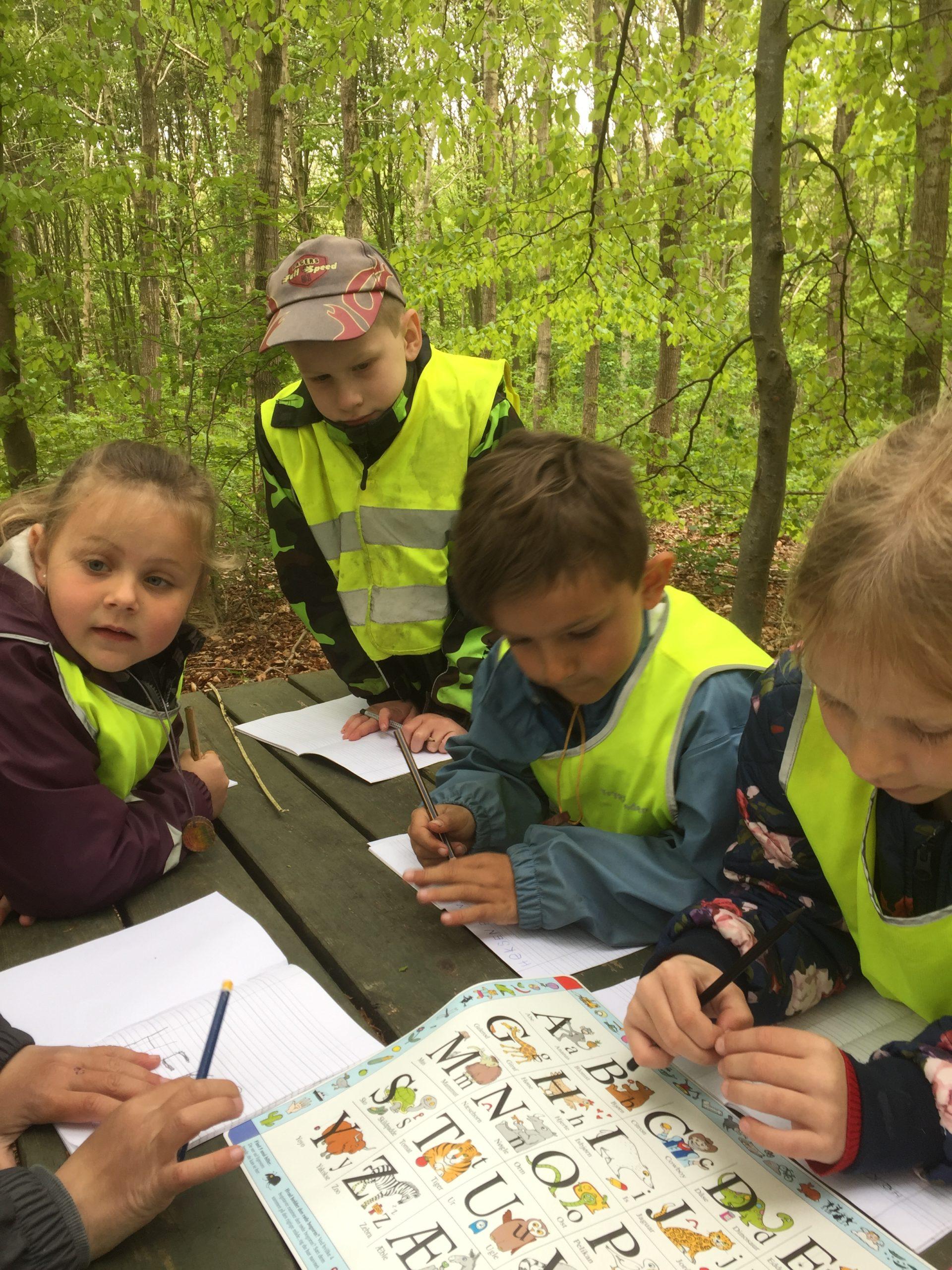 Skovskolen